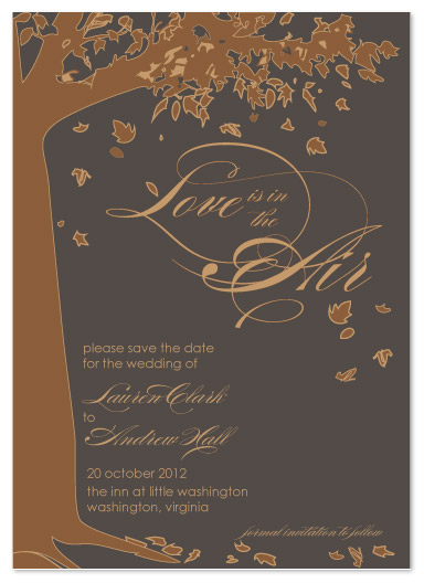 save the date cards - Falling in Love by paper ink.