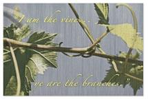 Vine and Branches by Debra Borrmann