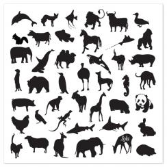 animal prints, educational design and decoration