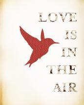 Love Bird by Amanda Silva