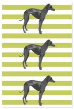 Dogs by Rebecca McKinney