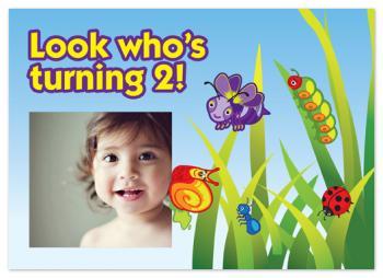 Bright Bugs Birthday Invitation