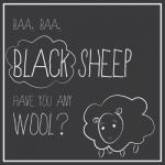 Little Black Sheep by Lauren Salomonson