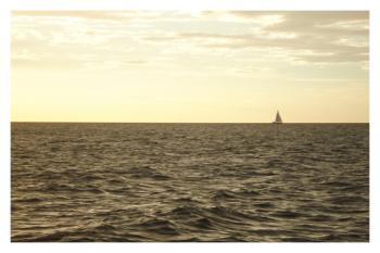 Sail Boat in Horizon