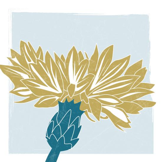 art prints - Wild Flower by Sparkmymind Designs
