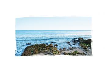 Zen by the ocean