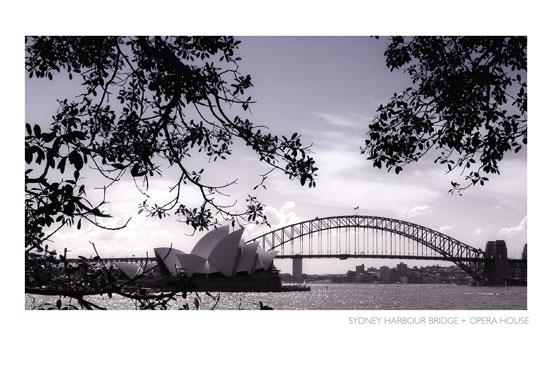 art prints - Sydney Harbour Bridge + Opera House by Grey Circle