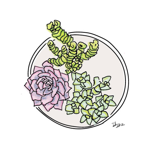 art prints - Succulent Love Series by Design Lotus