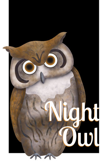 art prints - Night Owl by Maria Boudreaux