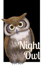Night Owl by Maria Boudreaux