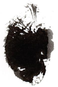 Black Ink 3