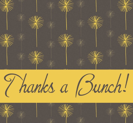 thank you cards - Bunches of Thanks by Elite Party Creations