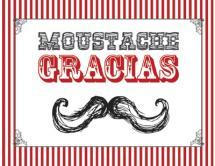 MOUSTACHE GRACIAS by Kimberly Starasinich