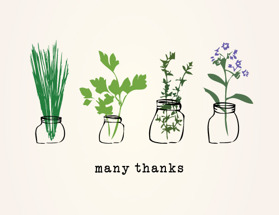 thank you cards - Thank you, herbs. by fox bear designs