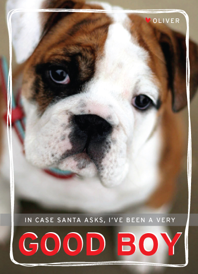 holiday photo cards - Good Boy by linda-lou