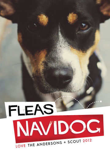 holiday photo cards - Fleas Navidog by Pistols