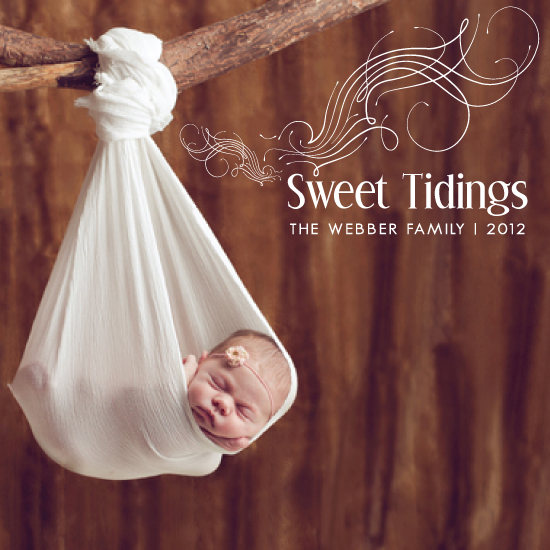 holiday photo cards - Sweet Tidings by RACHEL LESLIE DESIGNS