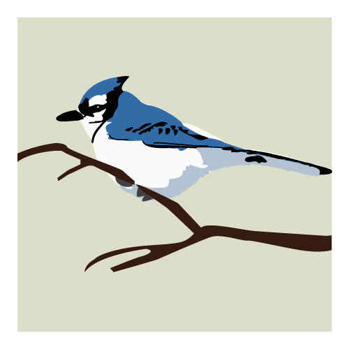 art prints - Blue Bird by Faye Femister