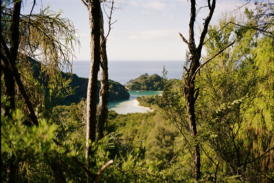 art prints - View from Abel Tasman by Panda and Pangolin