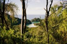 View from Abel Tasman by Panda and Pangolin