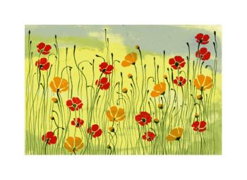 poppies and buttercups