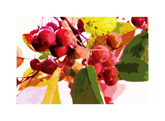 art prints - very merry berry by Jennifer Gundling