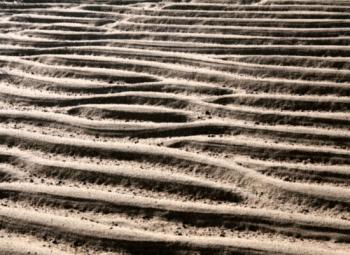 Brewster Sand