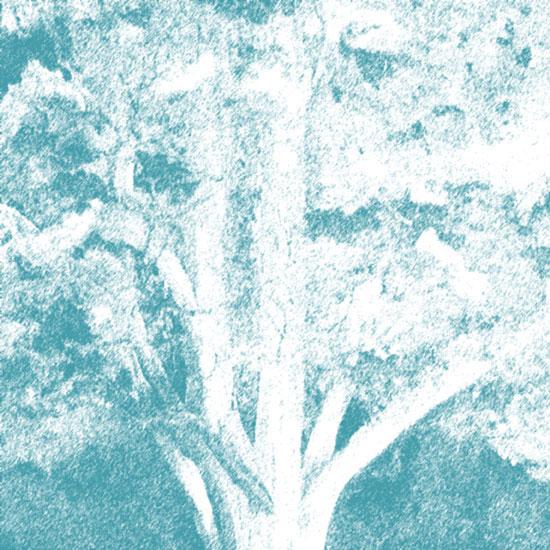 art prints - Misty Blue by NicoleMichele