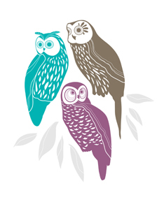 art prints - wise old owls by Nicole Lecht