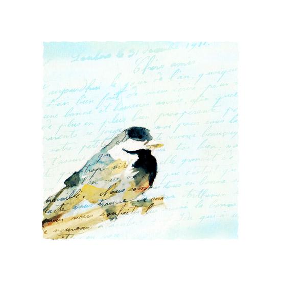 art prints - Bird's Eye View by Mandy Rider
