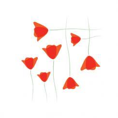 Crisscross Poppies