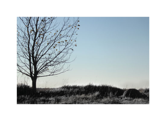art prints - Empty Air by Kristi