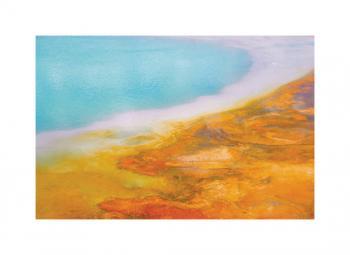 Impressions of Yellowstone 3
