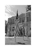 Flags by the Courthouse by Jacquelyn Hardies