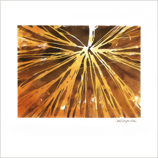 art prints - Odyssey by Peter Simpson Cook