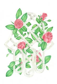 Lucky Roses
