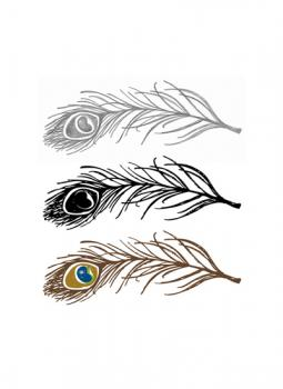 3 feathers