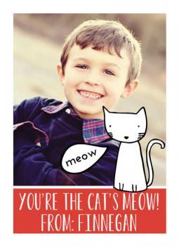 Cat's Meow Class
