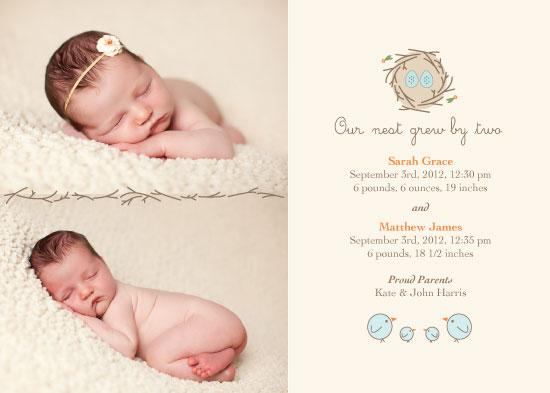 birth announcements - Our Nest Grew by Two by Rebecca Schyllander
