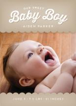 Canopy Baby by Lynn and Lou Paper Co