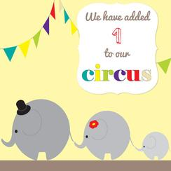 Our Little Circus