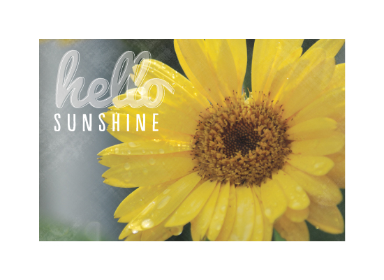 art prints - Hello Sunshine by Laura Mitzelfelt