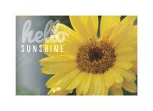 Hello Sunshine by Laura Mitzelfelt