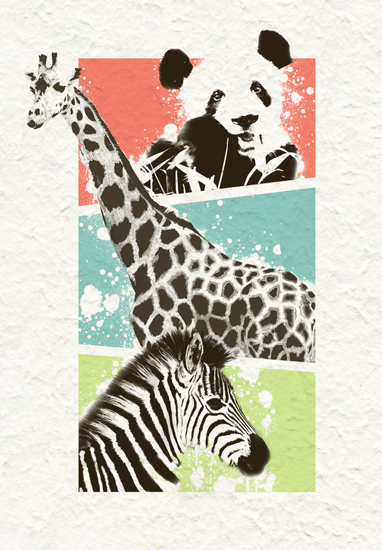 art prints - Animal Squares by Katherine