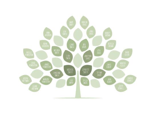 art prints - Genealogy Tree by Jessie Steury