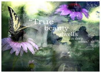 Dreaming True Beauty