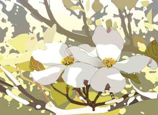 art prints - Dogwood by Pat Jennings