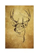 Deer Head Sketch by Kelly Sikkema