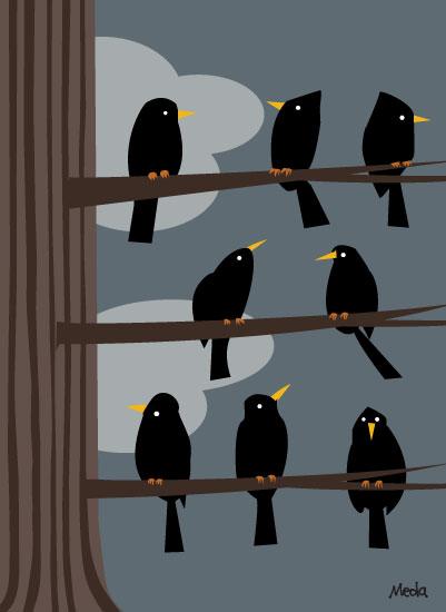 art prints - Birds in a tree by Daniel Meola
