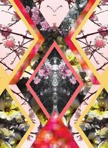 Kaleidoscpe floral by Kendra Lebo